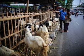 Komentar Berita Anies Perintahkan Satpol Pp Tertibkan Penjualan