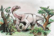 Peneliti Temukan Kandidat Baru Dinosaurus Terbesar di Dunia