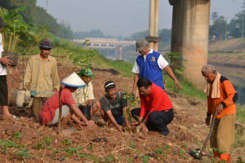 Pasokan Sayuran Ibukota Dioptimalkan dari Bantaran Kanal Banjir Timur