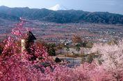 Tahun 2020 Jepang akan Berlakukan Permohonan Visa Lewat Online