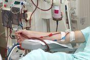 Seluk Beluk Penyakit Senyap Gagal Ginjal, Pemicu dan Terapinya