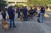 Korban Penembakan Massal Florida Hilangkan Trauma dengan Terapi Anjing