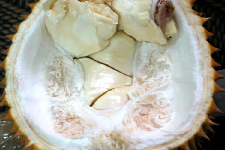Taman Buah Mekarsari saat itu menerima kiriman paket durian tanpa sekat dari Ir Abdullah A Karim, MSi, kepala Balai Pengawasan dan Sertifi kasi Benih Tanaman Pangan dan Hortikultura (BPSBTPH) NTB.