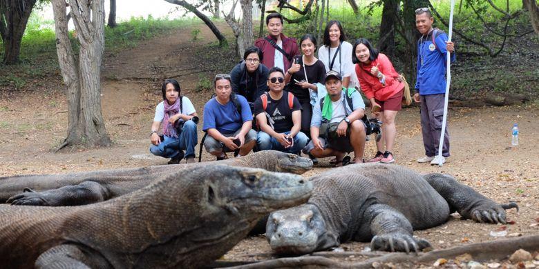 8 Fakta Seputar Komodo, Hewan Purba yang Hanya Ada di Indonesia