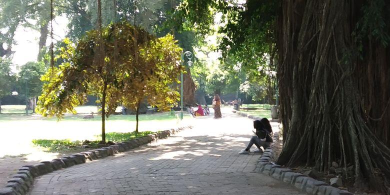 Ruang publik yang bisa dijadikan tempat outbound pengunjung Taman Balekambang Solo, Jawa Tengah.