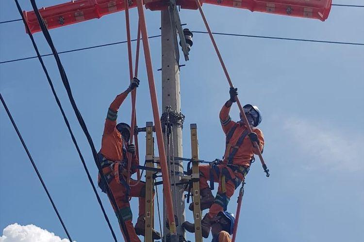 PLN Sumbar melakukan pemeliharaan jaringan sehingga empat daerah terkena pemadaman listrik terjadwal. (Dok: Humas PLN Sumbar)