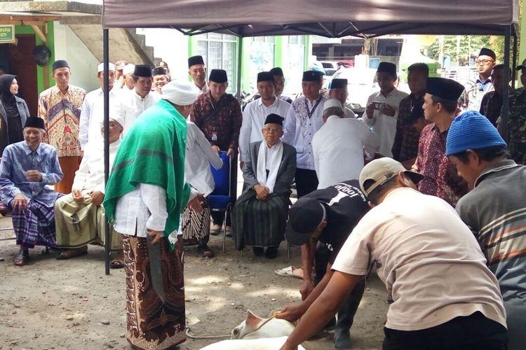 Cawapres nomor urut 1 Maruf Amin saat menyaksikan proses penyembelihan satu ekor sapi