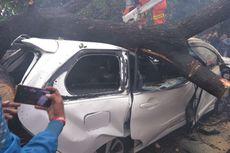 Dua Mobil Ringsek Tertimpa Pohon Tumbang di Jatinegara Kaum