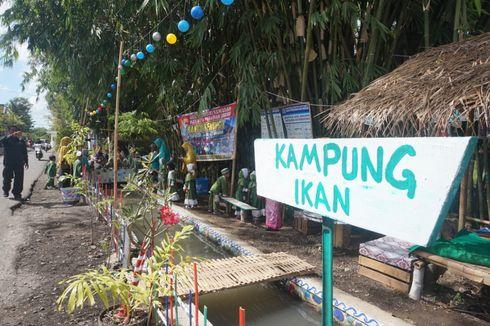 Warga di Banyuwangi Sulap Selokan Jadi Tempat Pelihara Ribuan Ikan