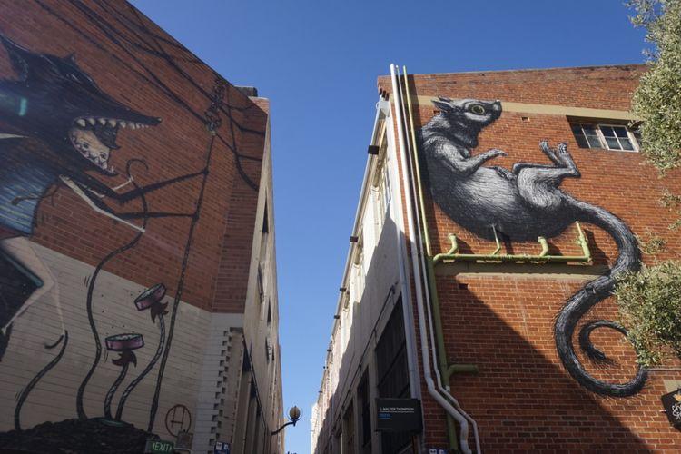 Mural di Wolf Lane, Kota Perth, Australia Barat, Selasa (6/2/2018).