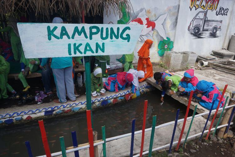 Ada ribuan ikan jenis Koi, Nila, dan Tombro yang dipelihara masyarakat Desa Jajag di selokan saluran irigasi desa.