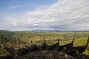 4 Tips Liburan ke Geoforest Watu Payung Turunan Gunungkidul