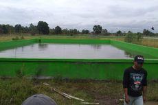 Antisipasi Alih Fungsi Lahan, Kementan Cetak Ratusan Hektar Sawah Baru di Aceh