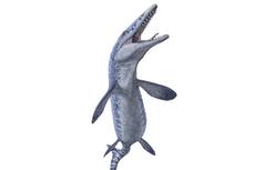 Niat Cari Batu Mulia, Penambang Malah Temukan Monster Laut Purba