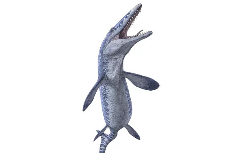 ilustrasi mosasaurus