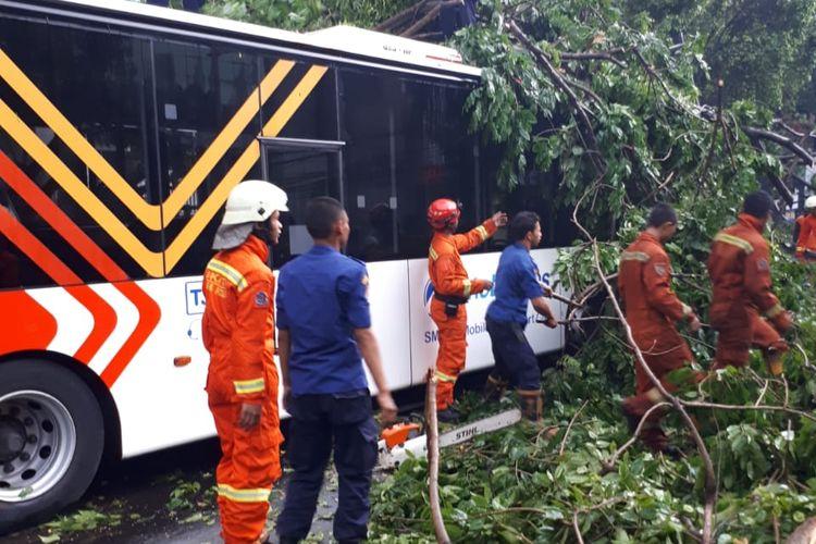 Pohon tumbang di Jalan Wahid Hasyim, Jakarta Pusat menimpa transjakarta, Kamis (22/10/2018).