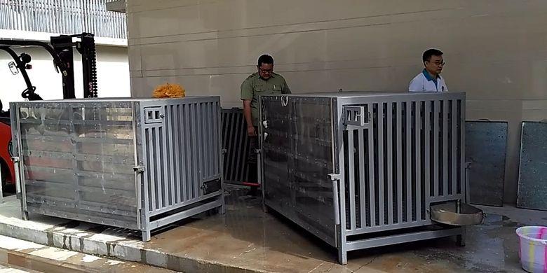 Dua kandang  yang akan membawa dua ekor panda dari China ke Indonesia di Wolong Panda Base, Senin (25/9/2017).