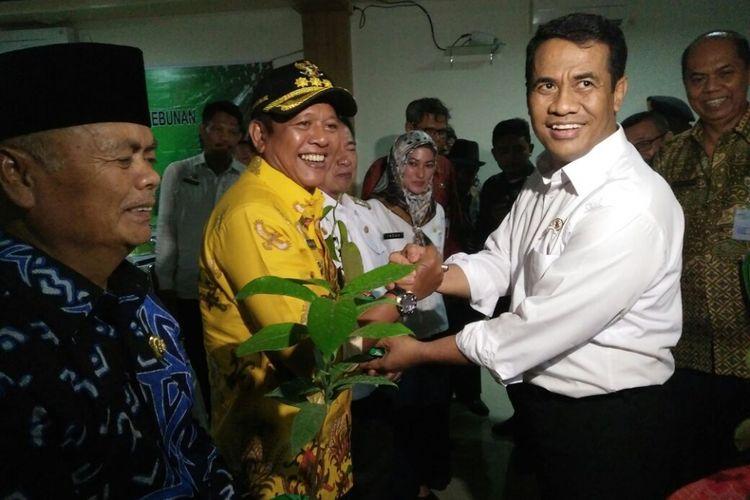 Pemberian simbiolis bibit cengkeh oleh Mentan kepada para bupati di Sulawesi Selatan. Mentan optimis untuk mengembalikan kejayaan rempah di bumi Indonesia, Kamis (7/9/2017).
