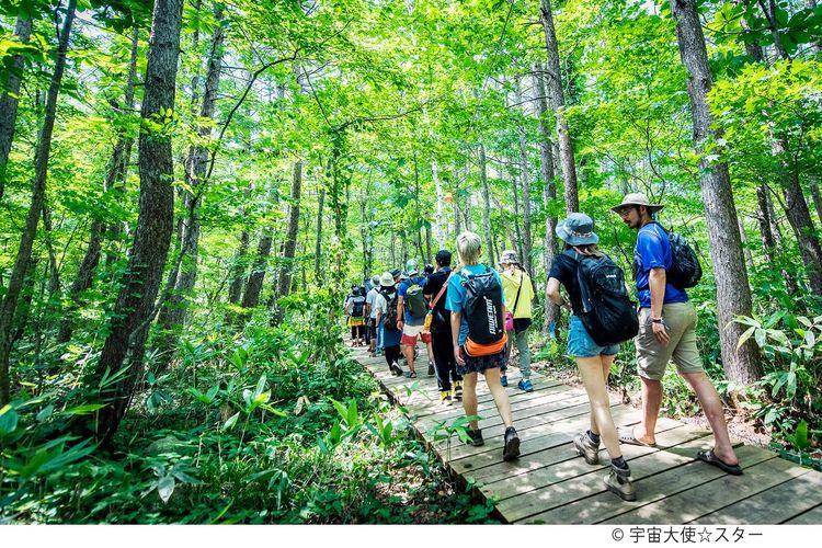 Nikmati kegiatan mendaki gunung dengan rute pendek di sekitar tempat penyelenggaraan.