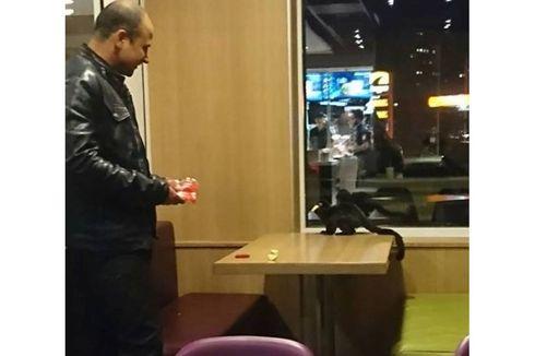 Keluar dari Kebun Binatang, Monyet Ini Makan Kentang di McDonalds