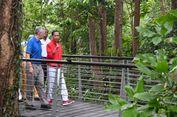 Jadi Rujukan Jokowi untuk Penataan Kebun Raya Bogor, Ini Fakta-fakta Tentang Singapore Botanical Gardens