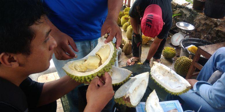 Durian lokal Gunungkidul yang dibeli langsung di petani.