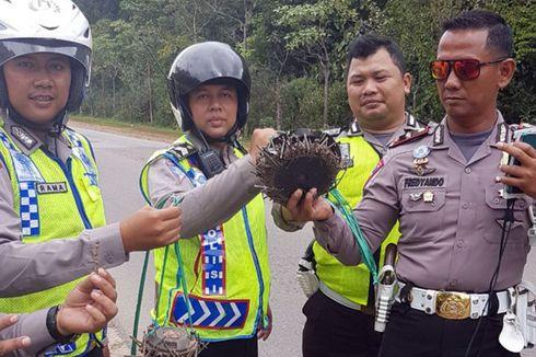 Kiloan Paku Ditemukan Bertebaran di Jalan-jalan di Batam