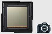 Canon Bikin Sensor Foto Raksasa, Untuk Apa?