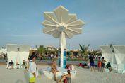 Dubai Tanam Pohon Palem Berdaun WiFi
