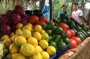 Benarkah Santap Makanan Organik Tekan Potensi Kanker?