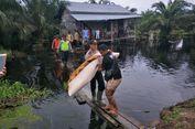 5 Fakta Buaya Terkam Bocah di Riau, Diserang di Depan Rumah hingga Peringatan BBKSDA