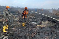 BMKG Beri Peringatan Potensi Kebakaran Hutan dan Lahan, Khususnya Riau