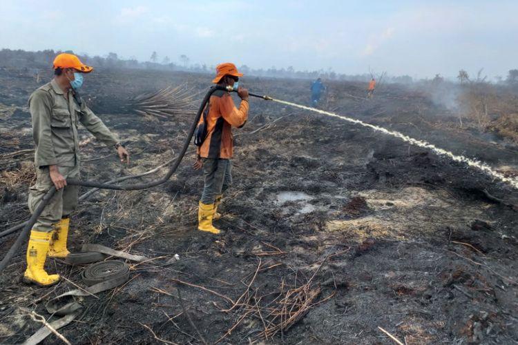 Kebakaran hutan dan lahan (karhutla) di Kelurahan Bangsal Aceh, Kecamatan Sungai Sembilan, Kota Dumai, Riau, Senin (18/2/2019).