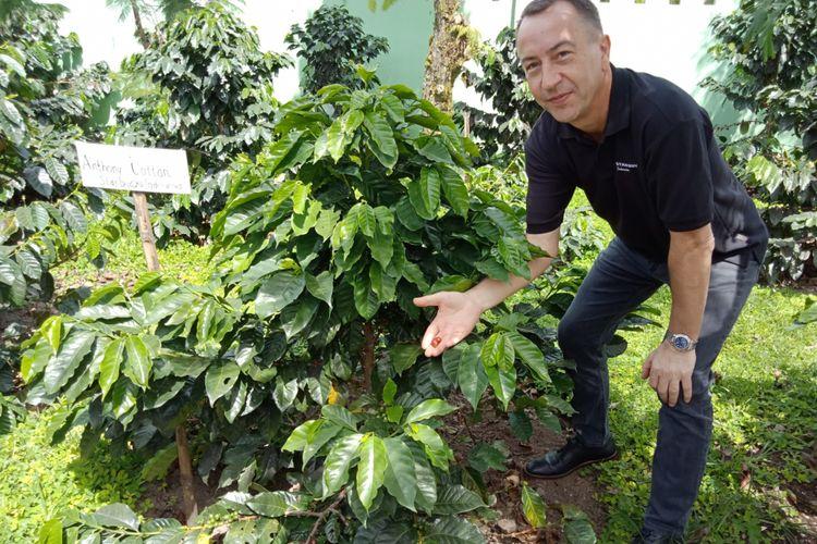 Direktur Starbucks Indonesia Anthony Cottan berpose di depan pohon kopi yang ditanamnya dua tahun lalu di Starbucks Farmer Support Center, Brastagi, Sumatera Utara.