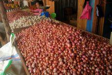 Belanda Ingin Belajar Pengembangan Bawang Merah di Indonesia