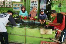 Pakai Aplikasi e-Grower, Petani Pisang di Lampung Raih Omzet Rp 3,4 Juta Per Minggu