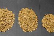 Biayai Liburan Istri, Pria di Australia Curi Emas 4 Kg dari Tambang