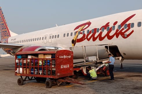 Sudah Terbang, Batik Air Mendarat Lagi karena Ada Bekas Burung di Mesin