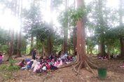 Sehari di Hutan Lindung Kota Langsa