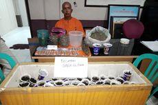 Budidaya Tanaman Ganja di Rumah, Seorang Petani Ditangkap Polisi
