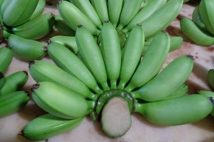 Guna meningkatkan ekspor pisang serta meningkatkan kesejahteraan para petaninya, Kementan melakukan program pengembangan usaha pertanian berbasis kemitraan.
