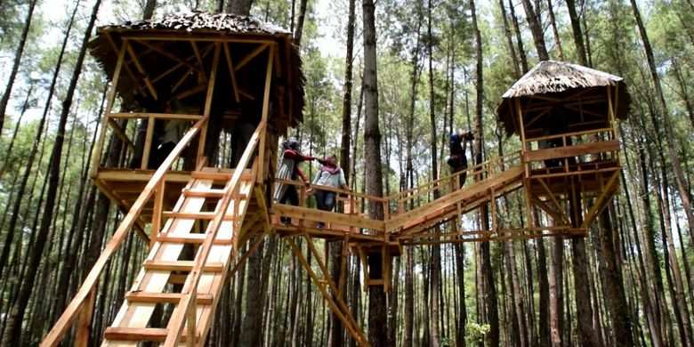 Rumah pohon ini dijadikan sebagai tempat foto selfie dan disukai para pengunjung yang masuk alam Wisata Hutan Pinus Samparona diKota Baubau, Sulawesi Tenggara, Minggu (11/2/2018).