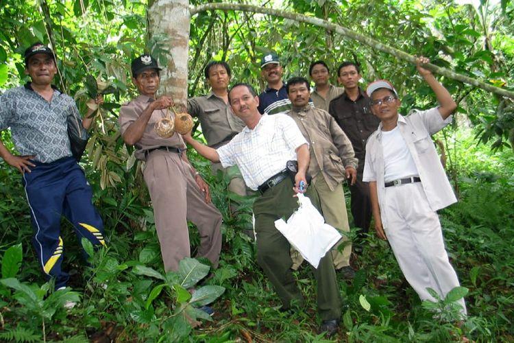 Pada Akhir Februari 2007 Dr. Mohammad Reza Tirtawinata Manager R & D di Taman Buah Mekarsari saat itu menerima kiriman paket dari Ir Abdullah A Karim, MSi, kepala Balai Pengawasan dan Sertifi kasi Benih Tanaman Pangan dan Hortikultura (BPSBTPH) NTB.