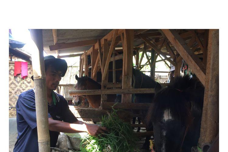 Nurdiansyah, pemilik kuda Kampung Cikempong, Kelurahan Pakansari, Kecamatan Cibinong, Bogor, Jawa Barat, Jumat (14/6/2019).