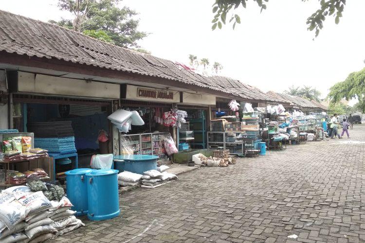 Sentra ikan hias di Raden Inten, Jakarta Timur, Senin (19/3/2018)