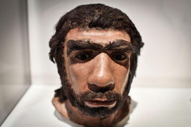 Wajah manusia Neanderthal ditampilkan untuk pameran Neanderthal di Musee de lHomme di Paris.