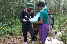 Kisah Tenaga Kesehatan di Pedalaman, Imunisasi Bayi di Tengah Hutan
