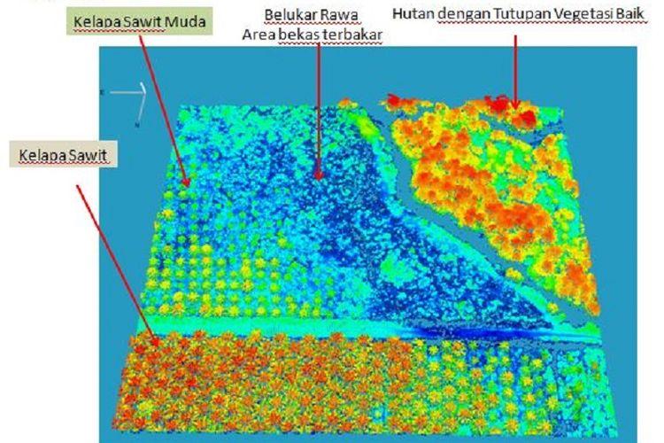 Contoh hasil pemetaan lahan gambut dengan teknologi LiDAR dengan skala 1:2.500