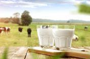 Benarkah Susu Sapi Organik Lebih Sehat?