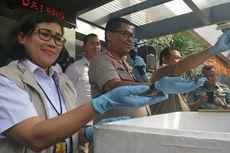 Kura-kura Moncong Babi yang Hendak Diselundupkan ke Hongkong dan Taiwan untuk Obat dan Kosmetik
